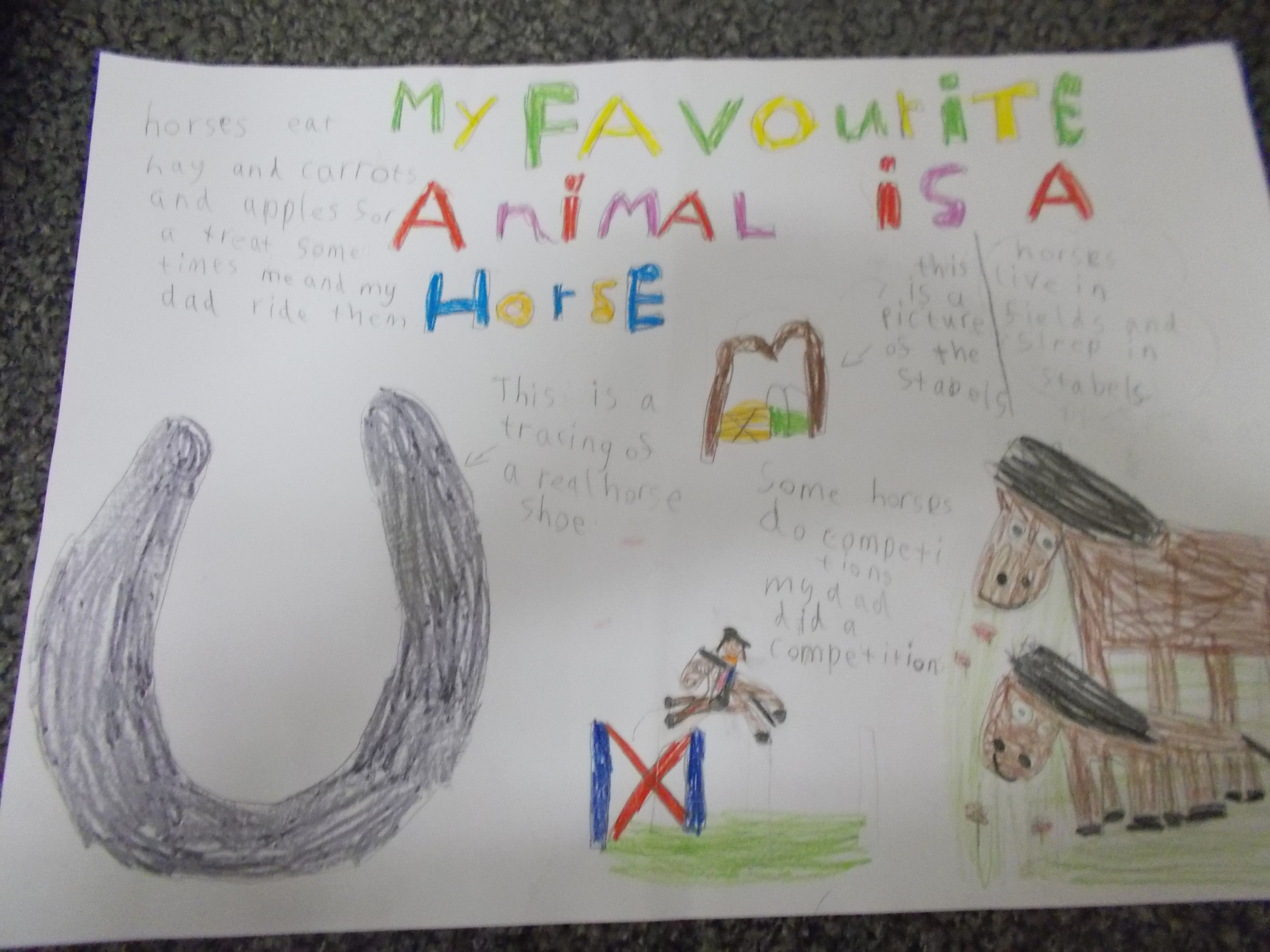 paragraph on my favourite animal