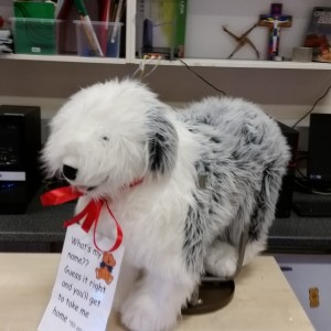 Christmas_Raffle_Dog